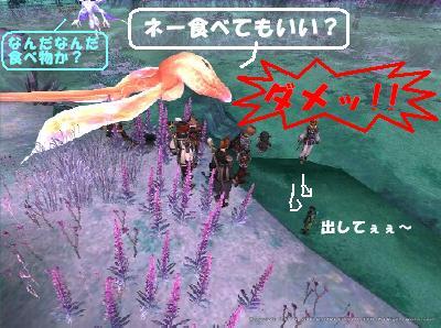 3水中金魚.jpg