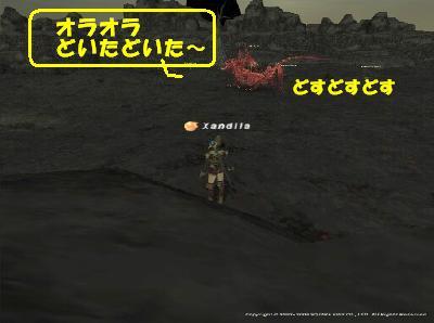 ワモ赤竜.jpg